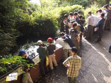 www.kaijo-academy.jp-12