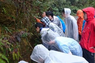 ヤンバルで生体観察をする第1隊の生徒達