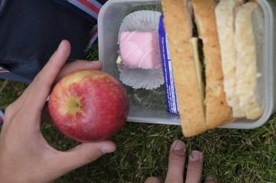 サンドイッチとリンゴ。あとはケーキです。