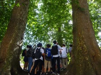 サーカスの中央に、井戸の跡があります。井戸を囲み、木々に囲まれる生徒たち。