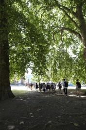 超広角レンズの成果その2。木がブワーとなっているのがよく分かりますね。分かりますか?