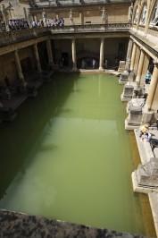 超広角レンズの成果その3。藻の色です。水が緑なのは。