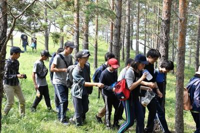 松林の中を歩きました