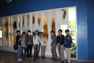 20130424_uenotakaraduka2.JPG