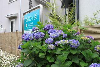 20130529kamakura-6.JPG