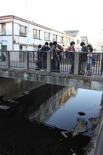 20131130_inokashira4.JPG