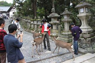 KP_20131022chuu3shuryo9.JPG