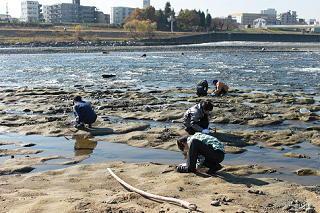 chigakuyagai201111-10.JPG