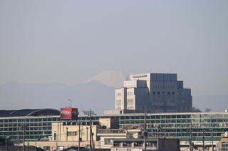 chigakuyagai201111-2.JPG