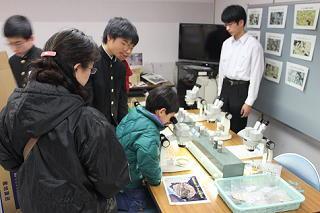 ochiichi-fes2012-3.JPG